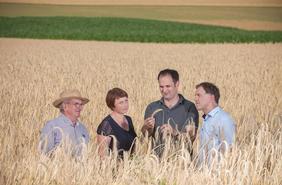 Die Bio-Mühle aus Landshut setzt auf regionalen Bio-Anbau